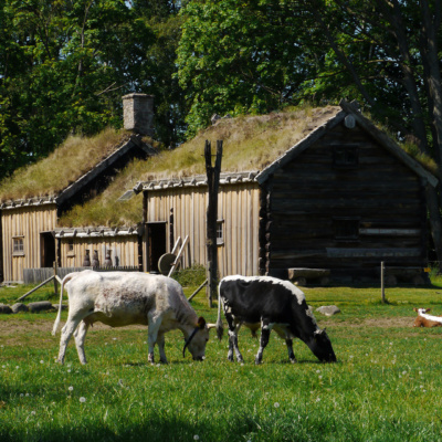 Explore Fredriksdal museums and gardens